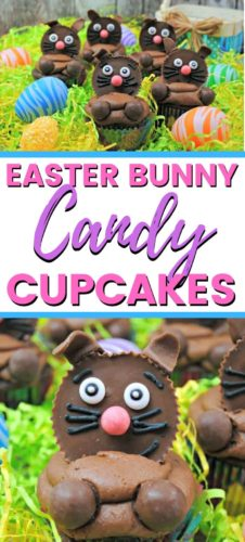 Easter Bunny Candy Cupcakes