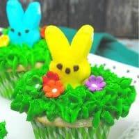 Peek-a-Boo Peeps Easter Cupcakes