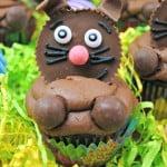 Chocolate Bunny Cupcake Recipe