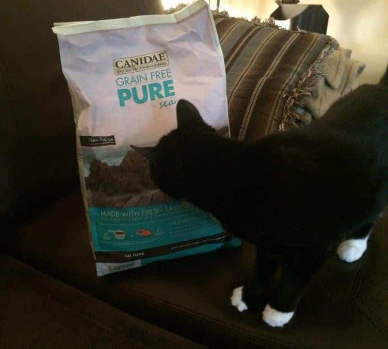 CANIDAE® Grain Free PURE Cat Food