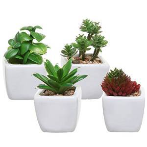 Set of 4 Small Modern Cube-Shaped White Ceramic Planter Pots with Artificial Succulent Plants