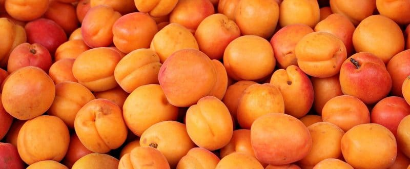 Summer Superfoods You Should be Eating - Apricots
