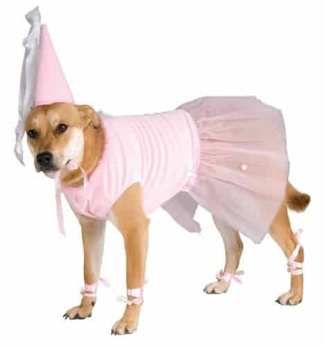 Princess Pet Costume