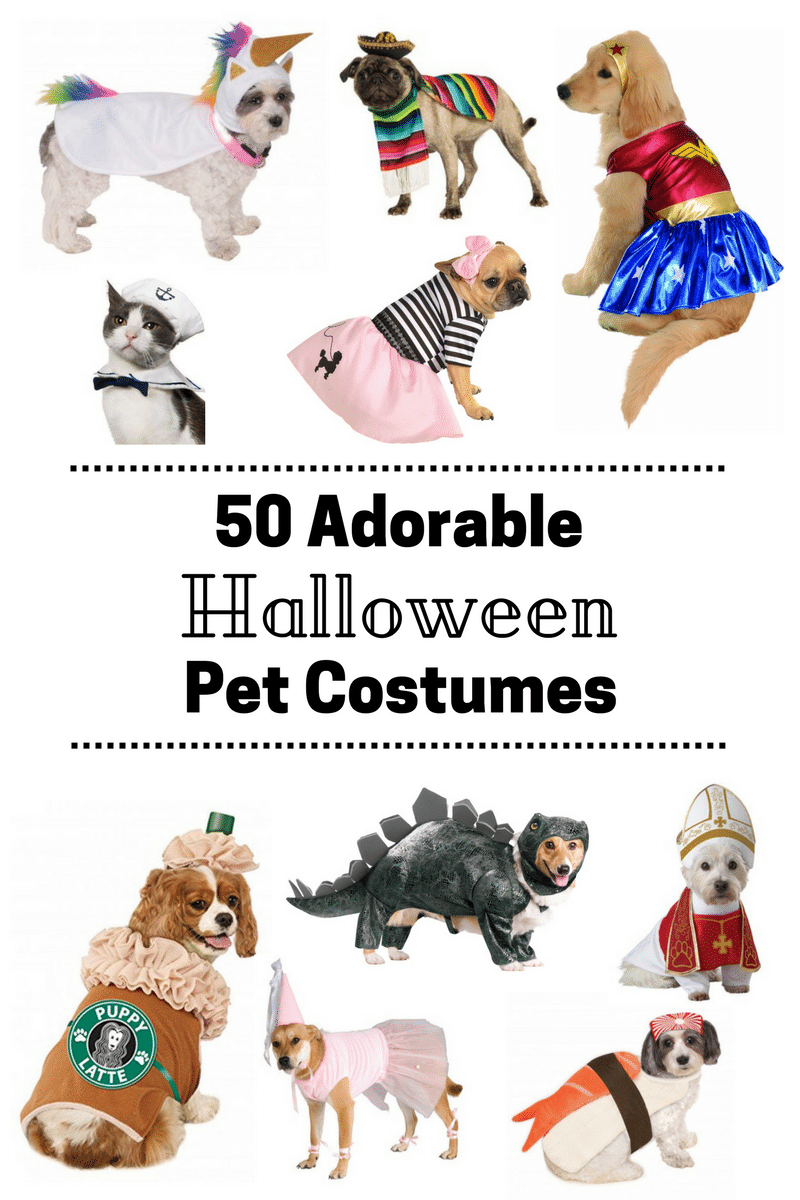 50 Adorable Pet Halloween Costumes