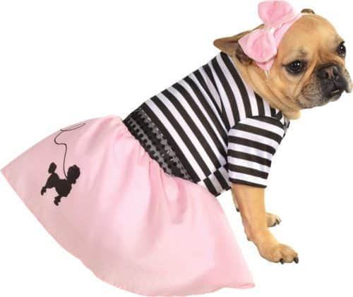 50's Girl Dress Pet Costume