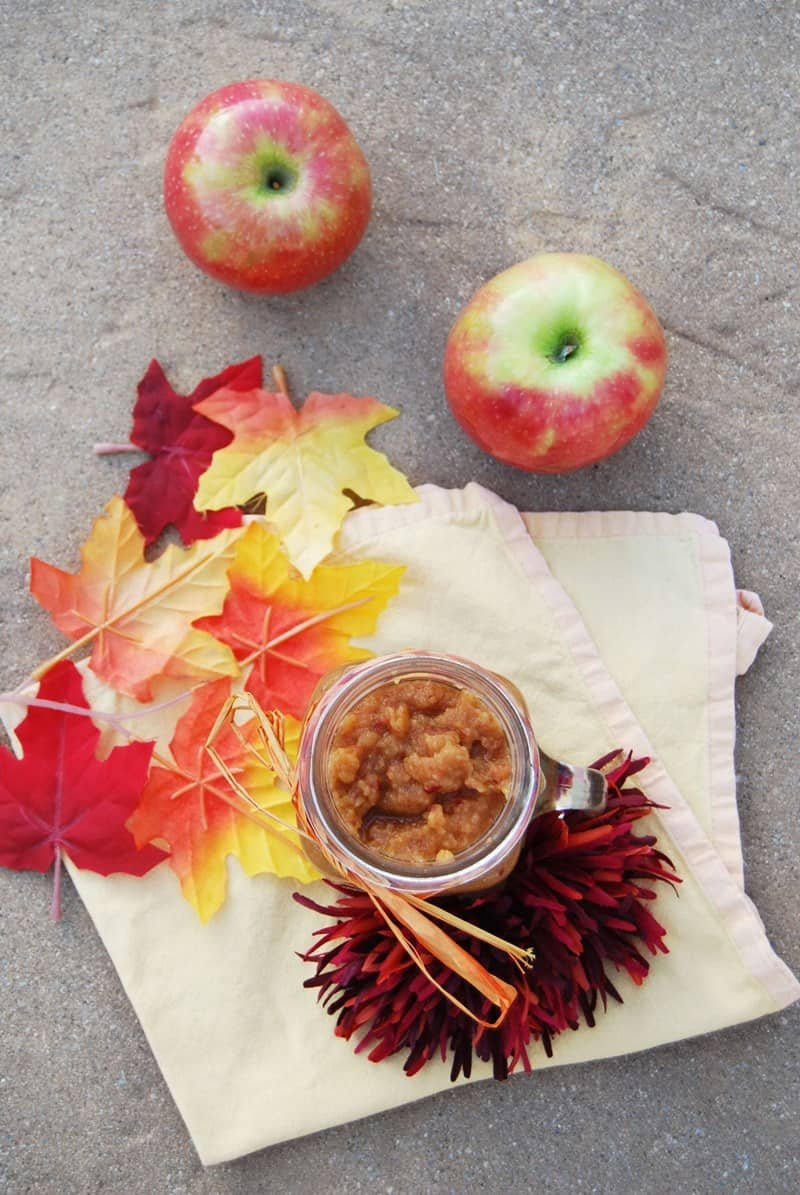 Easy Applesauce Recipe
