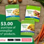 Earn $3 When You Buy 3 MorningStar Farms® Products at Walmart
