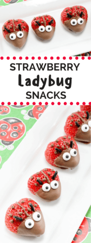 These adorable chocolate covered strawberry ladybugs are the perfect treat for your next summer party.