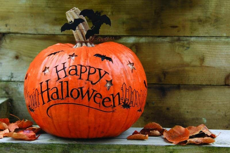 How To Carve A Pumpkin For Halloween In 4 Easy Steps