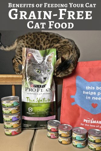 Discover the benefits of feeding your cat a grain-free cat food, as well as the reasons behind a  high-protein, grain-free diet.