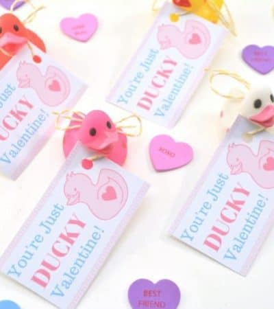 "Are you looking for super cute free Valentine printables for your kids to give out this Valentine's Day? This DIY ""You're Just Ducky"" kids valentine is so stinking cute and is very inexpensive to make for the entire class."