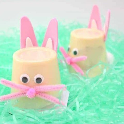 If you're looking for a cute, simple, inexpensive craft for Easter, these Easter bunny pudding cups are perfect!