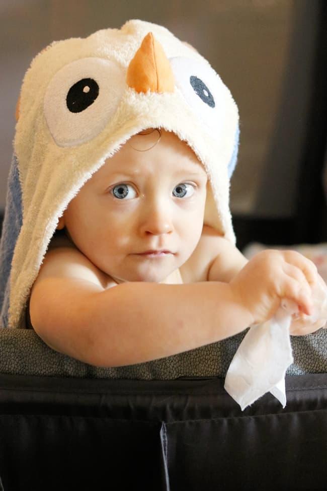 Apple Park Hooded Owl Towel