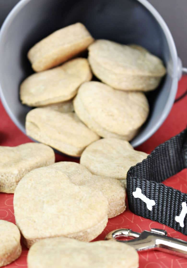Easy Homemade Dog Treats With Peanut Butter And Applesauce