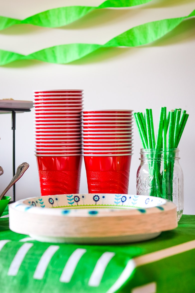 Paper plates and plastic cups on table
