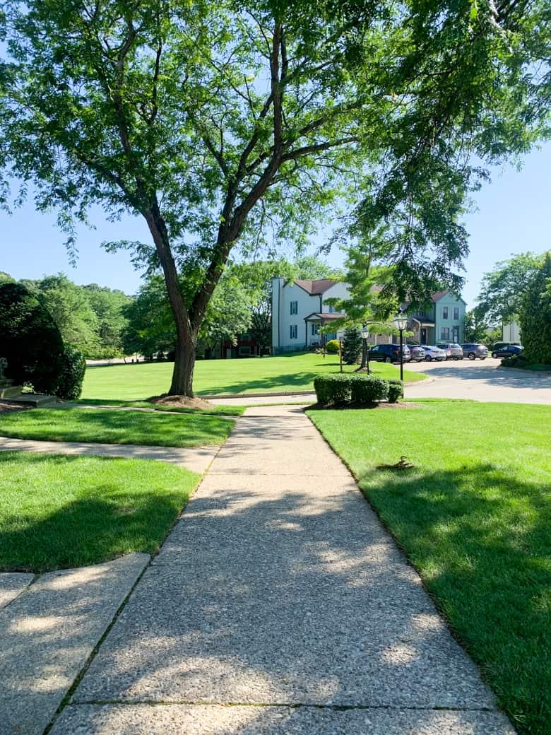 sidewalk in neighborhood