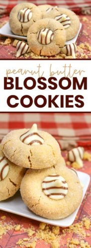 peanut butter blossom cookies pinterest image