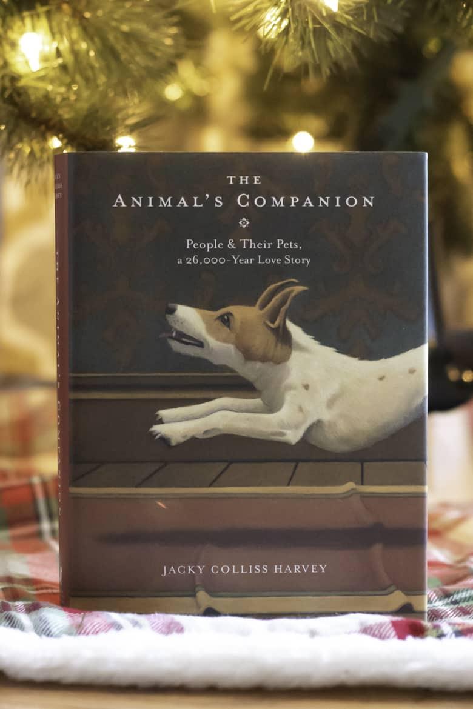 THE ANIMAL'S COMPANION