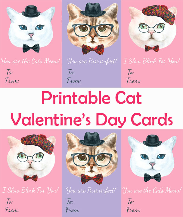 Cat Valentines