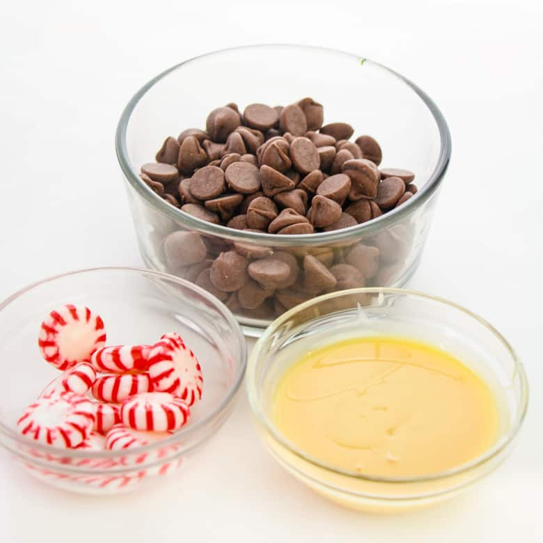 Ingredients for Peppermint Fudge