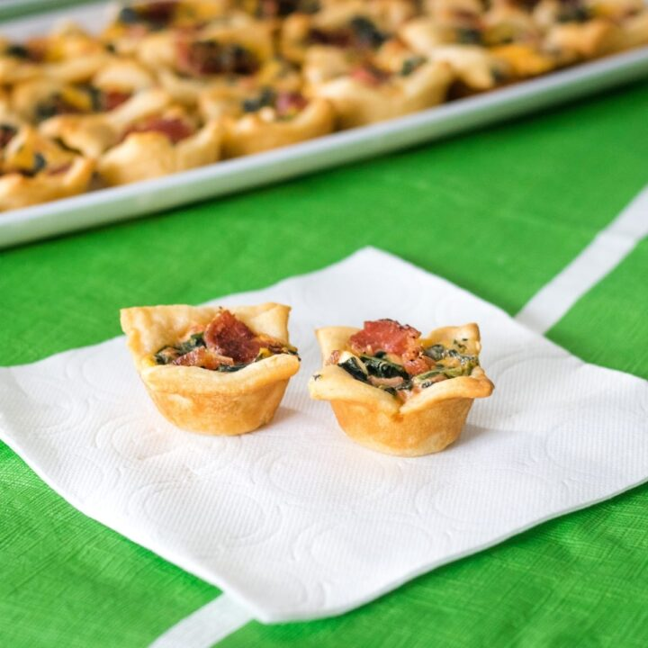 Cheesy Bacon Spinach Dip Bites
