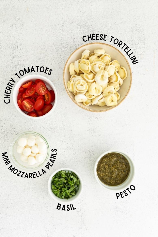 cherry tomatoes, cheese tortellini, mini mozzarella pearls fresh basil, and pesto