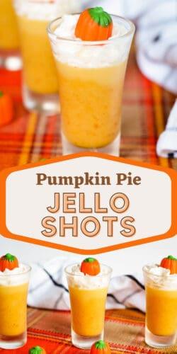 Pumpkin Pie Jello Shots Pin Image